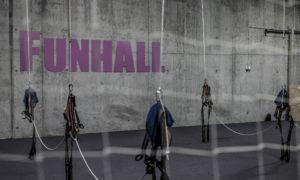 Funhall, Funhall Viborg, Løvens Hule, Bizz Up