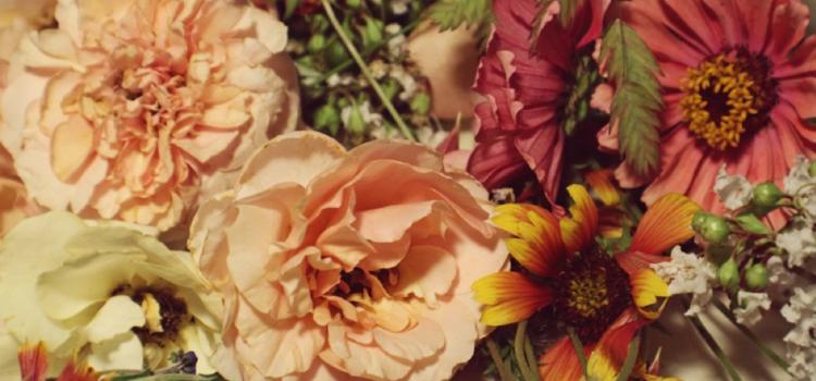 Bloomit: Et sandt fynsk blomstereventyr
