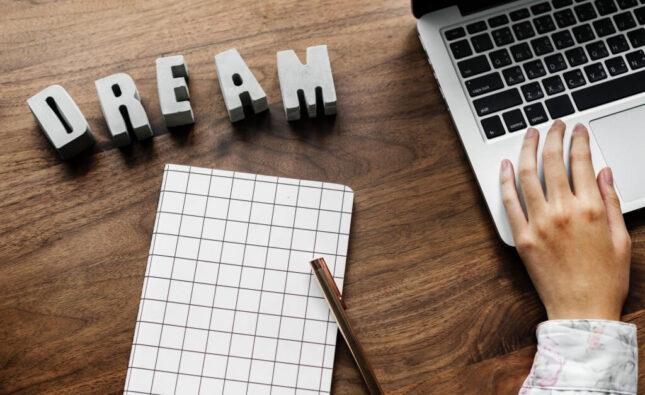 iværksætterplan, alfa-omega.dk, globalconnect.dk, Bizz Up