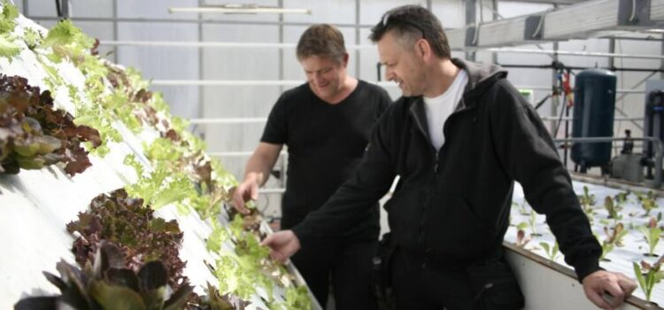 Kan iværksættere fra Jebjerg skabe en bæredygtig revolution?