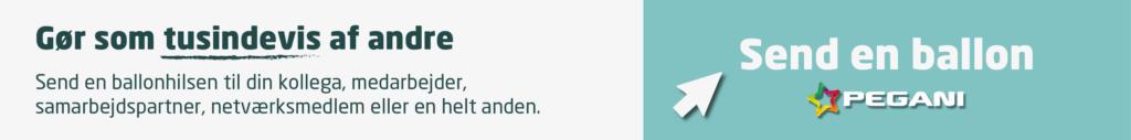 Send en ballon, Pegani.dk, bizzup.dk