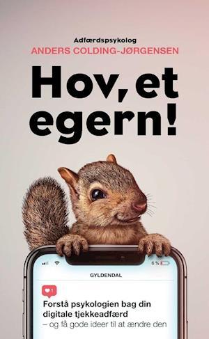 boganmeldelser, bizzupdk, saxo.dk