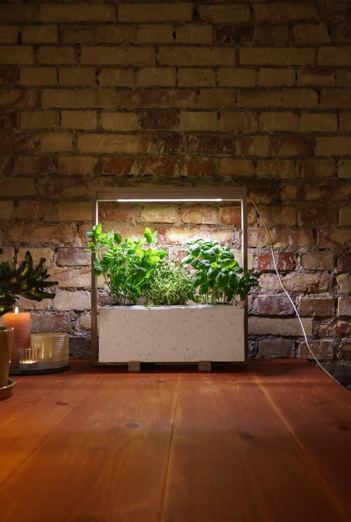 NordicGrow, bæredygtighed, Bizz Up